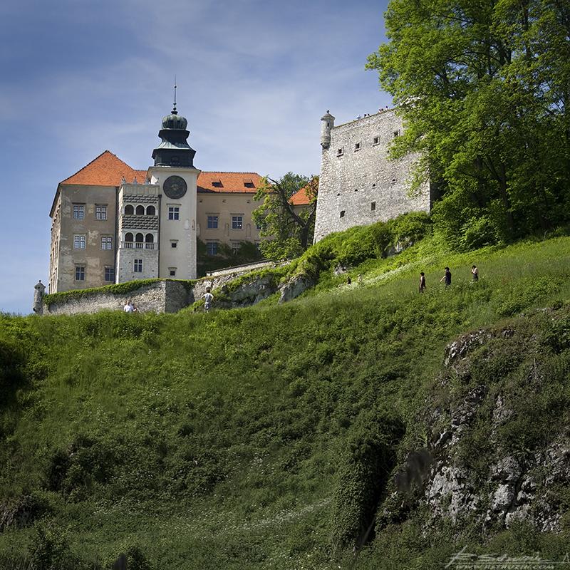 Pieskowa Skała, Zamek. Obstrzelany przez fotoamatorów z każdej możliwej strony. Radość... choć Perepeczko był tam pierwszy. Ale wybaczam, bo w ogóle był pierwszy.
